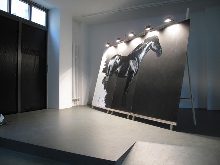 """""""Rocinante"""", gallery installation view"""